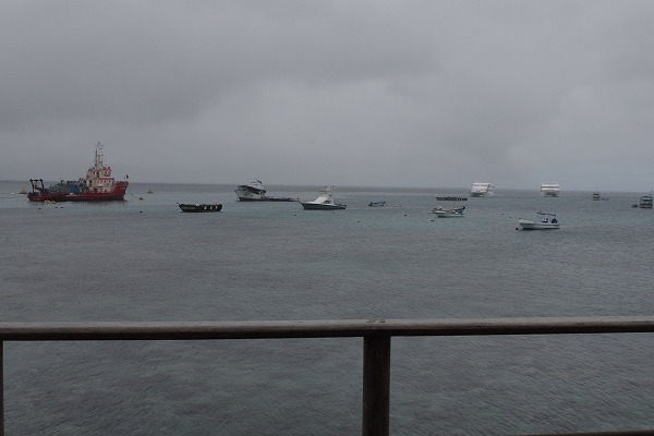 s-ガラパゴス諸島7日目 (1)