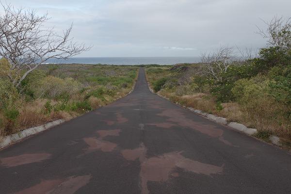 s-ガラパゴス諸島7日目 (15)