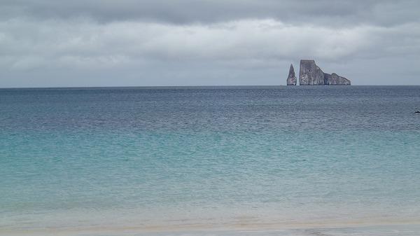 s-ガラパゴス諸島8日目 (13)