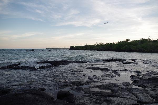 s-ガラパゴス諸島11日目 (30)