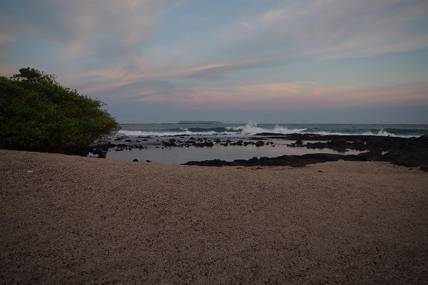 s-ガラパゴス諸島11日目 (33)