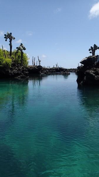 s-ガラパゴス諸島12日目 (31)