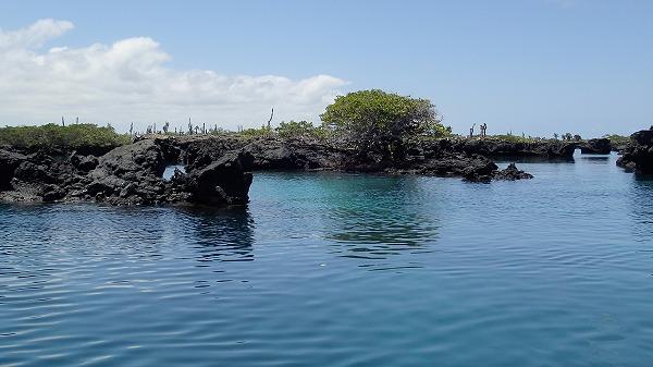 s-ガラパゴス諸島12日目 (30)