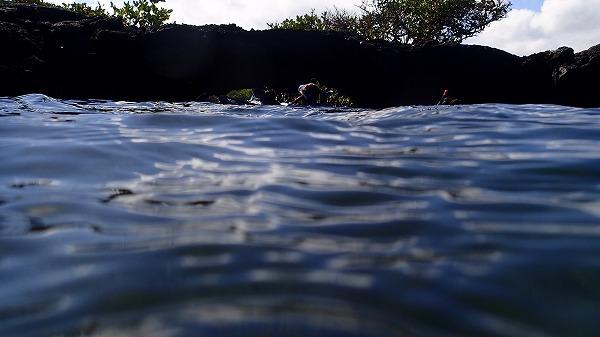 s-ガラパゴス諸島12日目 (60)
