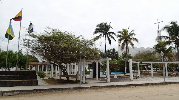 s-ガラパゴス諸島13日目 (17)