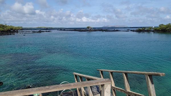 s-ガラパゴス諸島13日目 (31)