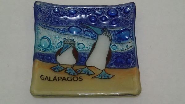 s-ガラパゴスでのお土産 (4)
