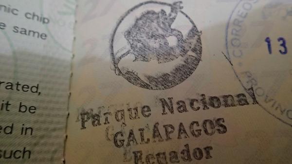 s-ガラパゴスでのお土産 (14)