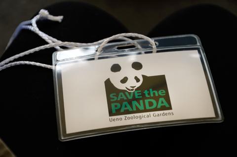 panda1_020914