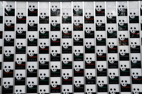 panda2_020914