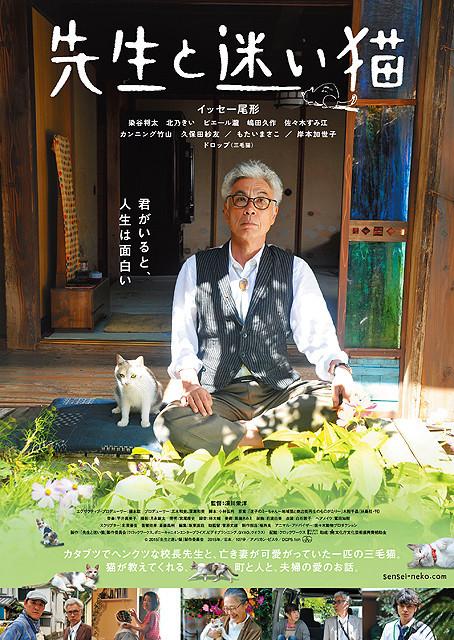 senseineko1_poster_large