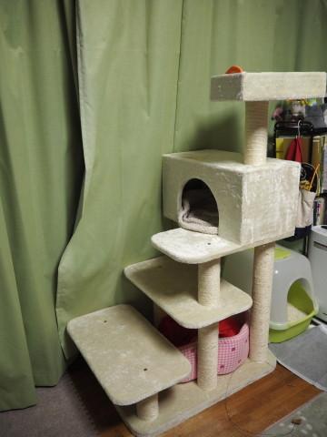 h27,1猫タワー
