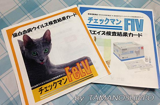 検査結果カード(FIV、猫白血病)