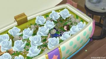 水玉の棺おけ風ベッド3