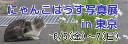 E38390E3838AE383BCL28Day29-thumbnail2.jpg