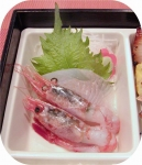 kaoribH2703_sashimi.jpg