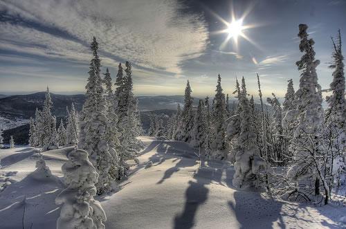 シベリアの凍土