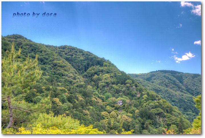 arashi12s.jpg