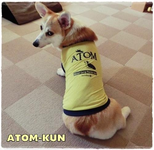 atom2.jpg
