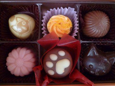 可愛いチョコレート♪