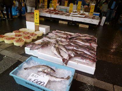 鮮魚天国?