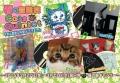 Cats quintet @猫の額