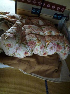 寝乱れた布団の中に・・・