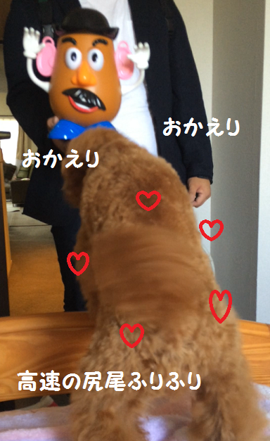 2015-06-01-5.png