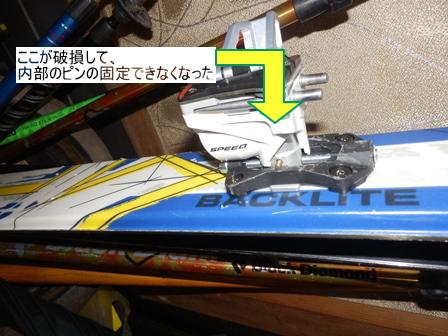 P1130189-1.jpg