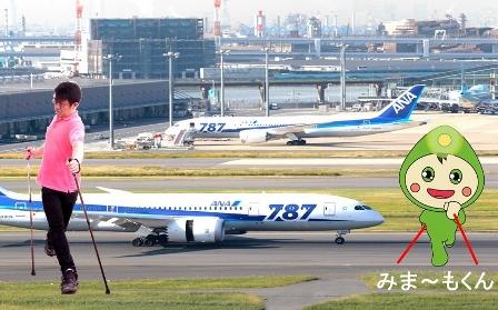 H27816ポールウォーク研修会 (448x279)