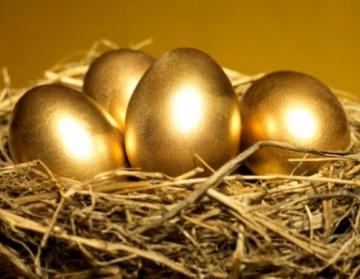金の卵 ポートフォリオ