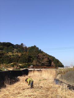 葦船写真6