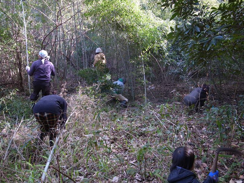 野北の森清掃途中