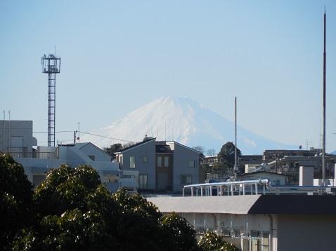 横浜市児童遊園地の富士見広場から見た富士山@横浜市保土ヶ谷区