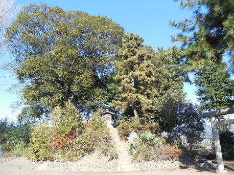 神明神社の富士塚「小中居富士」@川越市A