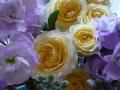 ナンフェア 黄色のバラ・ストック