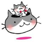 nyaitoh avatar