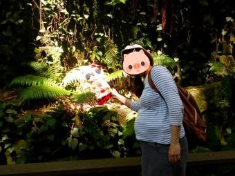 おばぶ誕生