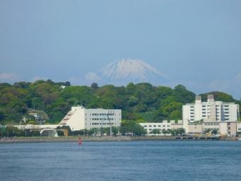 東京湾からの富士山