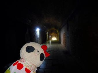 おばぶトンネル探検