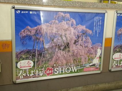 桜でショー