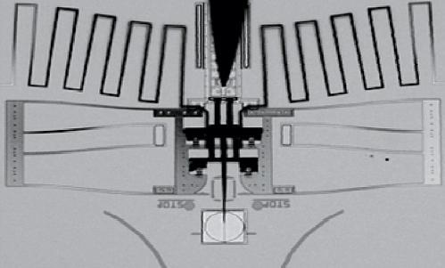 ナノインジェクター nanoinjector