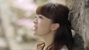 熊木杏里 - 桜