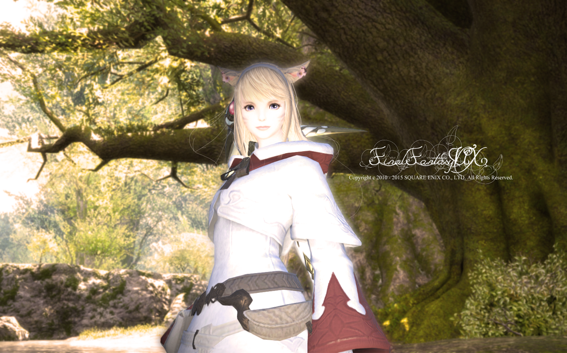 ff14ss0022.png