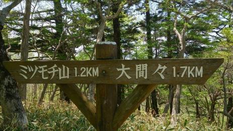 2015八方ヶ原_04