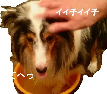 MOV_0678(2).jpg