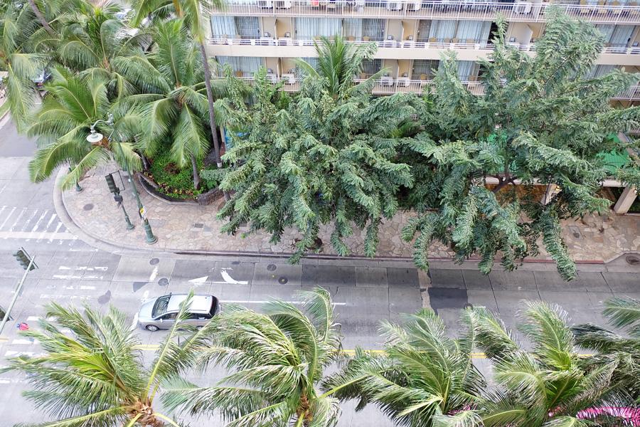 ハワイ 最終日