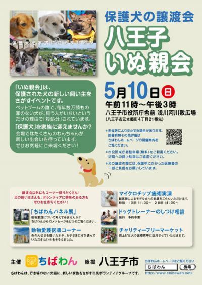 hachiohji13_poster_convert_20150509124411.jpg