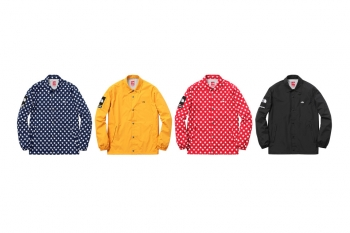 supreme-the-north-face-spring-summer-2015-24-960x640.jpg