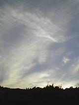 050509_1748~01.jpg